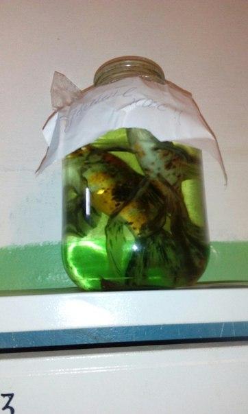 Ул .Черепанова 1. В первом подъезде .две большие аквариумные рыбки.