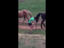 Woman Pees Pants After Touching Electric Fence - 993565 - YouTube (360p)