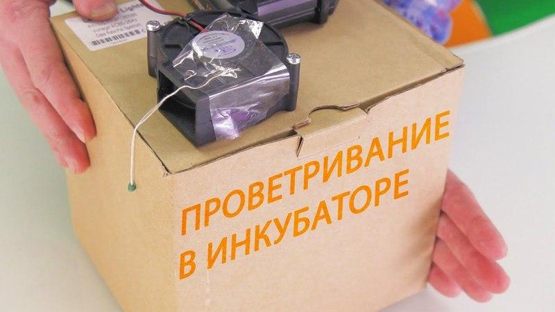ШКОЛА ИНКУБАТОРОСТРОЕНИЯ №8 (проветривание и вентиляция в инкубаторе своими руками. Яйца тоже дышат)