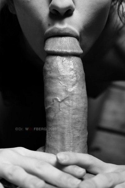 Undies amateur sailor tugging dick