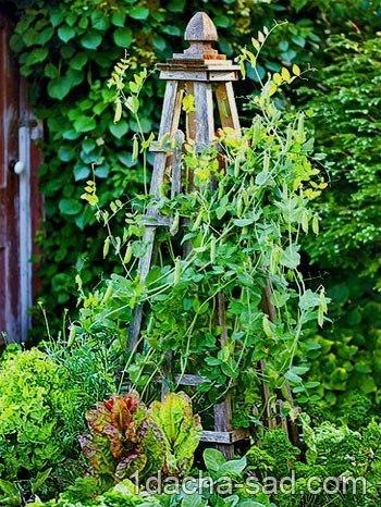 красивый огород своими руками как сделать красивые грядки! времена, когда огород засевался исключительно с целью получить как можно больше урожая, канули в лету. сейчас, согласно последним