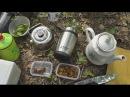 Как заварить лесной чай из чаги? Способы приготовления