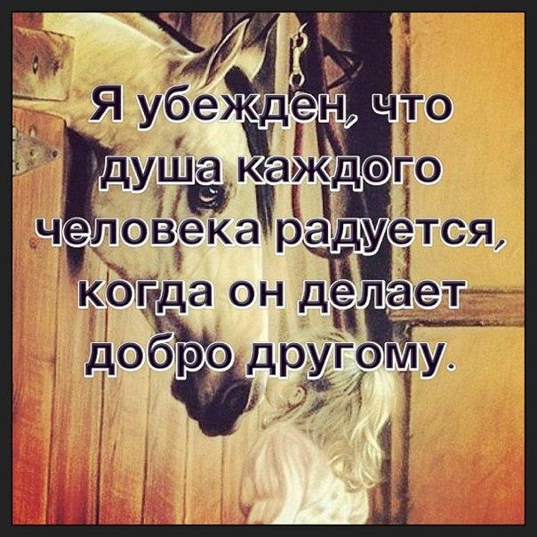 Не говори Всевышнему как велики твои беды, а лучше расскажи своим бедам, как Велик Всевышний ...