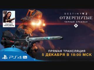 """""""destiny 2: отвергнутые"""" — играем в """"черный арсенал"""""""