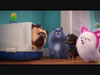 Тайная жизнь домашних животных 2 - новый трейлер