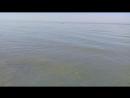 Азовское море (сентябрь 2018г). г.Ейск