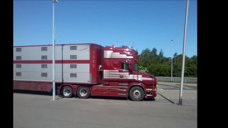 Special Scania T730 V8 Veax Reek