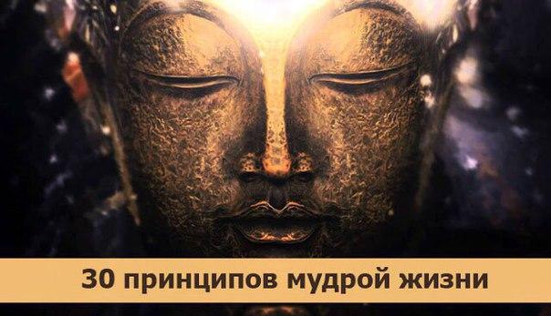 *30 принципов мудрой жизни*