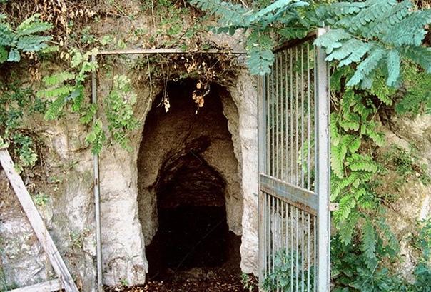 КАКИЕ ЭКСПЕРИМЕНТЫ ПРОВОДИЛИ В ПЕЩЕРАХ НЕАПОЛЯ НАД СОБАКАМИ В восточной части крупного вулканического района, расположенного западнее от Неаполя, находится небольшая пещера. По данным недавно