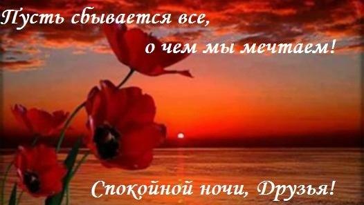https://pp.vk.me/c619516/v619516634/d683/WFEhN1vD4y8.jpg