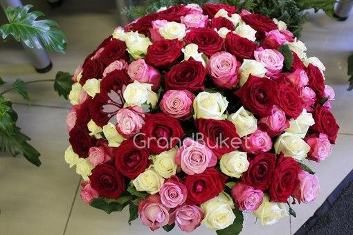 101 роза.