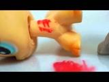 Littlest Pet Shop Flawed Design Music Video