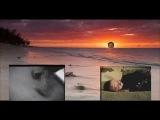 Зеленый слоник - La Isla Bonita | RYTPMV