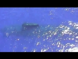 submarine Saphir S602 (Франция)