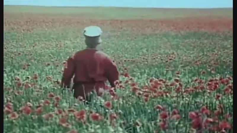 Раз, два горе не беда (1988 г.)