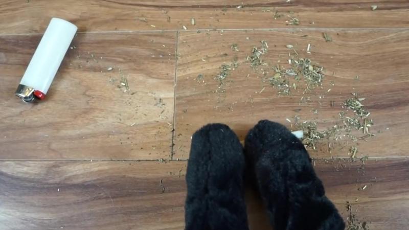 Sylvesters Catnip Crisis
