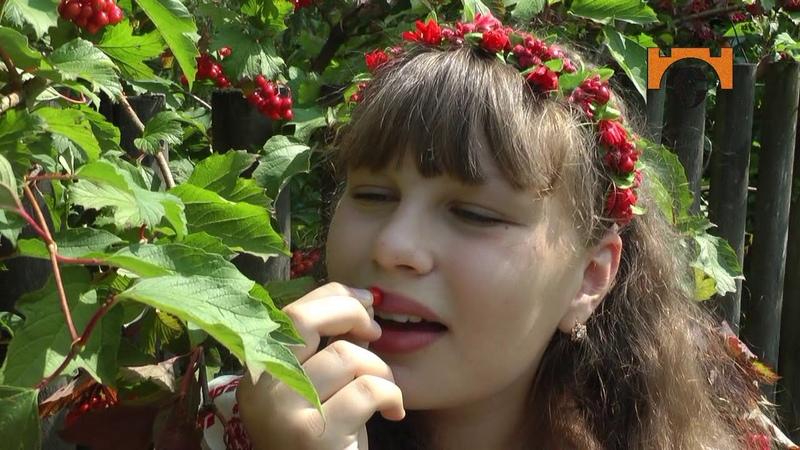 Анастасія Чубінська Україна вишиванка ( сл. О.Вратарьов муз. О.Злотник)
