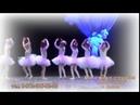 Детский клуб Пружинки и Балетная студия Мотылек открывают новый сезон