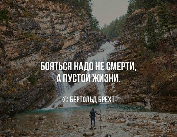 https://pp.vk.me/c7002/v7002585/da1d/9ZD1qpNn4Ms.jpg