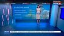 Новости на Россия 24 • Итальянский танцующий миллионер погряз в кредитах