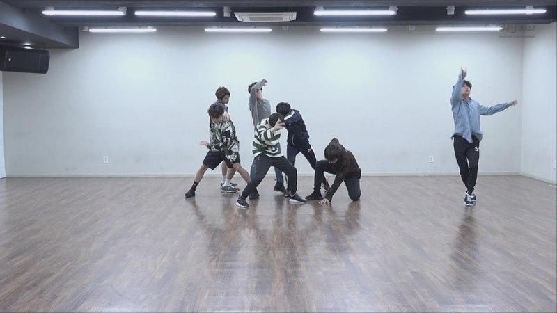 CHOREOGRAPHY BTS 방탄소년단 'FAKE LOVE' Dance Practice