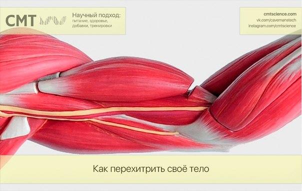 Фото №427637214 со страницы Вадима Омельяненко