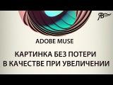 Картинка без потери в качестве при увеличении Adobe Muse