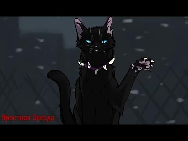 Коты Воители Кровавое племя Копы Заказ