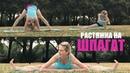 Моя утренняя растяжка в парке / My morning splits stretching routine