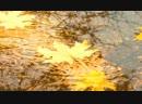 Блюз опадающих листьев