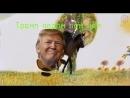 Трамп винипух 360P mp4