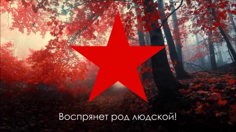 Возложение венков у кремлевской стены неизвестному солдату