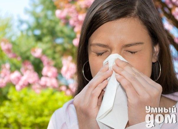 Все для здоровья и красоты! Заходите! :)  ➨ Аллергия! Как бороться?  ➨ Как избавится от веснушек? Ваши секреты.  ➨ Никогда не съем! Какие продукты являются самыми опасными для здоровья и фигуры?