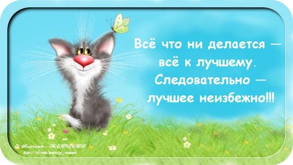 http://cs613519.vk.me/v613519490/f7ad/hBC2iT1alqY.jpg