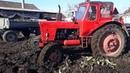 МТЗ-82, МТЗ-52 и др в снегу и грязи по шею! Трактор мчался по полю слегка попахивая!