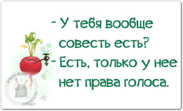 https://pp.vk.me/c543105/v543105123/1183f/dbnG05-opEc.jpg