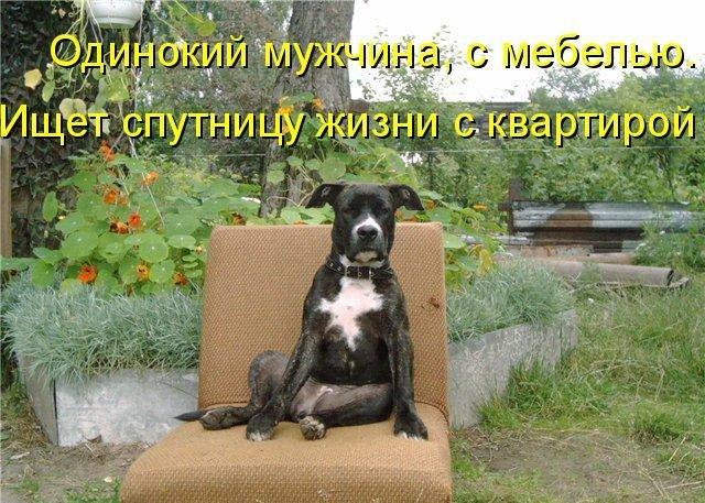 http://cs403430.vk.me/v403430142/569e/5iVihzk1uNU.jpg