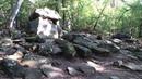 Эльф Линедж слушает пение птиц в сказочном лесу древних дольменов