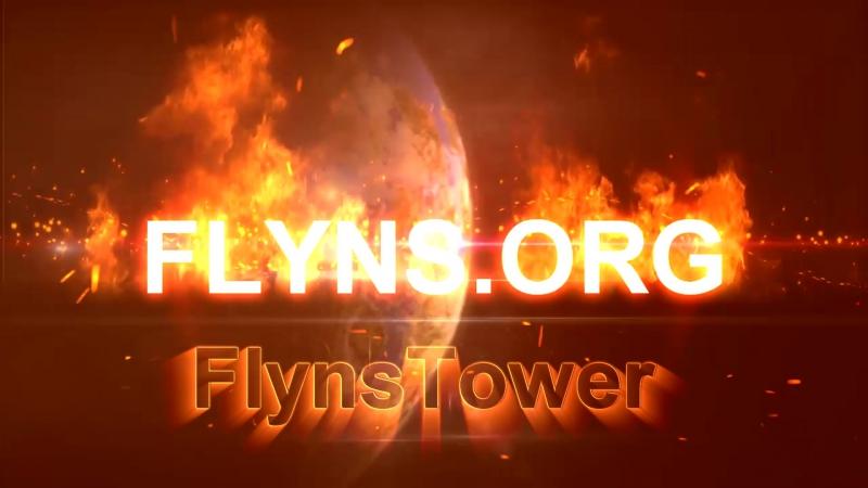 Flyns_org2
