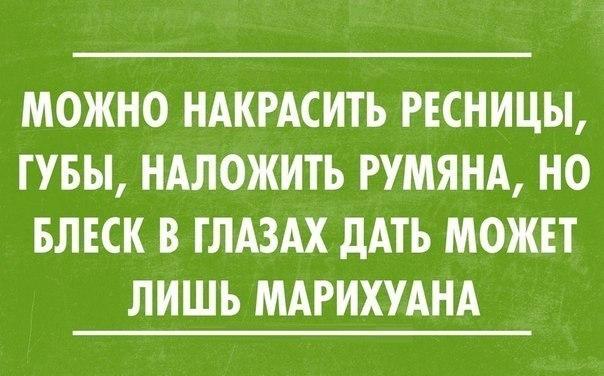 http://cs408327.vk.me/v408327423/840f/KXq-NVx2i38.jpg