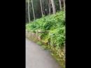 Прогулочка по парку Кисловодск