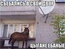 Богдан Васильевич фото #22