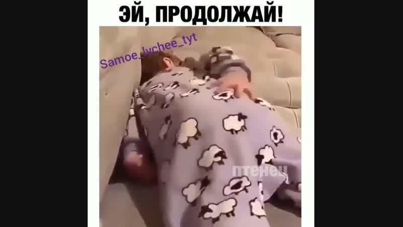 Samoe_lychee_tyt