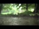 Шум дождя и грома Звуки дождя для сна Rain meditation Sound of rain