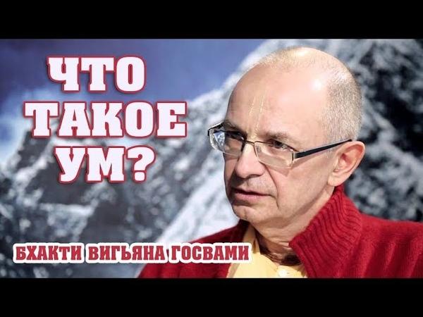 Бхакти Вигьяна Госвами (Вадим Тунеев) - Что такое ум?