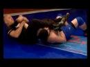 Armenian professional ArmFighting federation president Hayk Ghukasyan Armenian MMA and Grappling tel 37499 13 13 13 Mixsed Martial Arts www armfc com