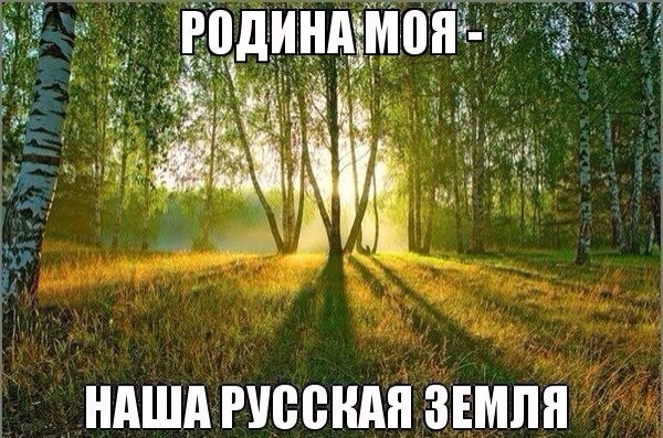 pbTkseTvWz0.jpg