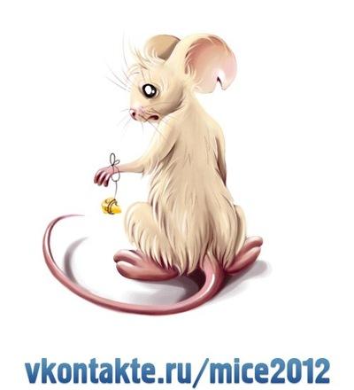 Данил Маркин, 2 июня 1999, Пятигорск, id213540670