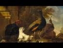 Улитка и курица-проект