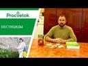Защитите свои растения Пестициды фунгициды инсектициды гербициды